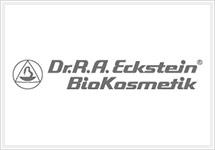 stf_logo_eckstein